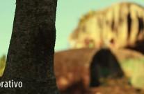 Pedra da Cebola